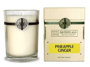 Archipelago - PINEAPPLE GINGER Soy Wax Candle